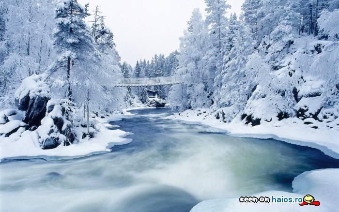 peisaj_suberb_de_iarna_aln_zapada_rau_pod_copaci_padure.jpg
